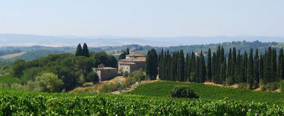 The Villa and its Vineyards